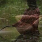 HEIDI 49, vision-mist, An Allegorical Vessel